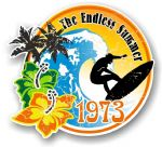Aged The Endless Summer 1973 Dated Surfing Surfer Design Vinyl Car sticker decal 100x90mm